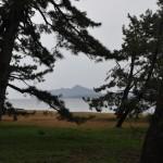 Вода, горы и деревья
