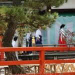Из одного закрытого помещения храма в открытое провели даму, которая будет изображать Охина-саму. Пока она только в прическе, макияже и нижнем косодэ с хакама. В открытом павильоне ее будут наряжать в парадное дзюни-хитоэ