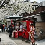 Впрочем, на Арасияме ходить в кимоно - вроде традиции. Особенно в красивый сезон