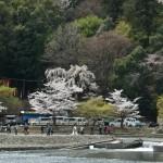 Другой берег Кацура-гавы