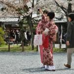 Девочки выгуливают кимоно