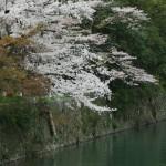 japan_arashiyama_2014_021