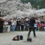Гость Старой столицы развлекает гуляющих жонглированием мячиков