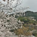 japan_arashiyama_2014_034