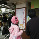 "Девушку и ее спутника заинтересовало мягкое мороженое ""сакура"". Нас тоже"