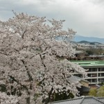 japan_arashiyama_2014_053