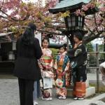 japan_arashiyama_2014_065