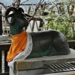 Священное животное храма. Овца. Когда наступит Год Овцы (следующий?), надо будет придти сюда еще