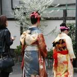 japan_arashiyama_2014_094