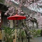 japan_arashiyama_2014_097