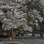 japan_arashiyama_2014_102