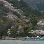 japan_arashiyama_2014_108