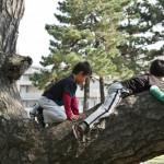 japan_kids_37