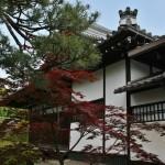 В 1571 году Ода Нобунага пошел войной на буддийские храмы. Многие храмы старой столицы были разрушены и сожжены. Однако, Родзан-дзи счастливо избежал подобной участи. Чуть позже, уже при Тоётоми Хидэёси, храм был перемещен на новое место - с северо-восточной стороны уже Нового императорского дворца Госё, на улицу Тэрамати. В конце XVIII века пострадал в пожаре и по прямому указу императора Кокаку был реконструирован. Сейчас Родзан-дзи является не только памятником Мурасаки Сикибу, но и одним из четырех окуродо (частные буддийские храмы под прямым управлением императорской семьи), на кладбище которого нашли успокоение многие члены этой самой семьи и прочей высшей аристократии