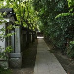 Боковая дорожка к старому кладбищу