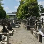 Справа - могила Иусты. Немного дальше по правой же стороне - вход на кладбище