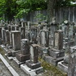 Этим надгробиям явно не меньше пятисот лет