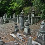 Тут еще лучше видно. Вся поверхность земли усыпана обломками старых надгробий. Это не вандализм. Если только вандализм времени: у камня тоже есть срок жизни