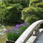 Говорят, что Тоётоми Хидэёси любил этот храм и бывал тут неоднократно