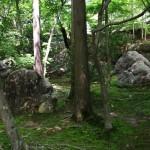 В самом парке полно камней. То ли натуральных, то ли тщательно выбранных