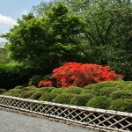 Цветочная часть парка