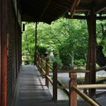 С левой стороны видна часть стены основного здания храма. Справа - мостик-переход от основного здания к Рэйкодэну. Прямо по курсу - фрагмент сада