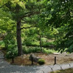 Как уже упоминалось, сад проектировал Мусо Сосэки. В саду напротив основного здания храма находится могила Асикага Такаудзи