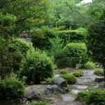 Тропинка в саду