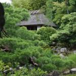 Вид на чайный домик из глубин сада