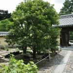 Внутренние ворота храма изнутри