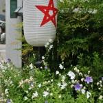 Потому что форма цветка напоминает пентаграмму, символ Абэ-но Сэймэя
