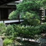 Оставив ненадолго сад камней, обошла храм по основным галереям. Это один из двух маленьких внутренних садов