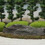 """Самый большой центральный камень сада, """"Лежащий бык"""". За ним полоса азалий. В начале мая эти кусты цветут нежными розовыми цветами"""