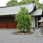 Дерево - умэ. В конце февраля-марте Дзёнан-гу - одно из лучших мест в Киото для любования цветами сливы-умэ. Когда жили в Фусими, каждый год сюда ходили