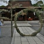 Вокруг бамбукового столбика...