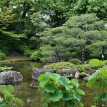Это второй из садов Дзёнан-гу, Хэйанский