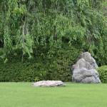 Один из камней сада Момояма, четвертого из садов Дзёнан-гу