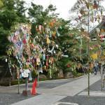 Еще саса-кадзари (украшенный бамбук) перед входом в храм