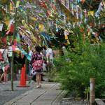 """Вышли из храма и опять оказались в """"роще"""" украшенного бамбука"""