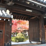 Осенние краски чудесно контрастируют с деревом зданий