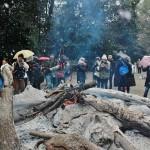 За воротами устроили большой костер из распиленных обломков старых деревьев, собранных во время очистки храмового леса Тадасу-но мори. Туда же подкладывают прошлогодние амулеты, приносимые посетителями