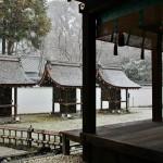 japan_new_year_2015_dawn_26