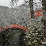 Немного пробежались вокруг храма. Все-таки снег нечасто у нас, хотя боюсь, вы мне теперь не поверите