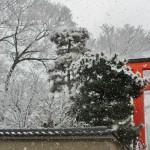 japan_new_year_2015_dawn_59