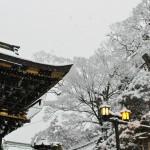 japan_new_year_2015_dawn_69